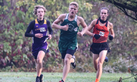 2020 MSR Cross Country All-Conference Teams